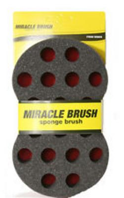 Magic Miracle Sponge - Msb06